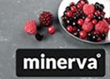 We fit Minerva Worktops